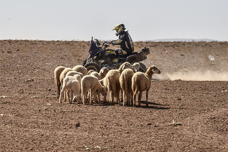 2017 OiLibya Rally - Morocco